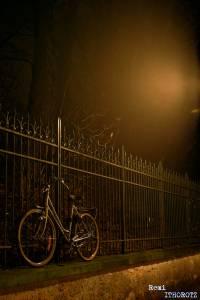 Brouillard/Fog